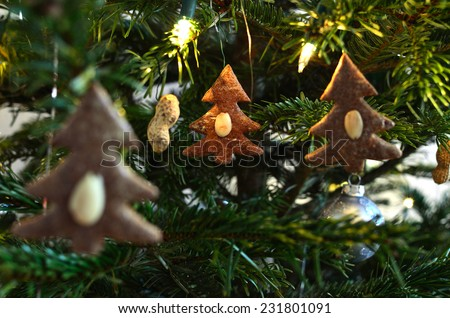 Three Gingerbread Trees  /  Three gingerbread ornaments with almonds on our Christmas tree - stock photo