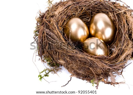 Three golden eggs in the nest isolated on white background - stock photo