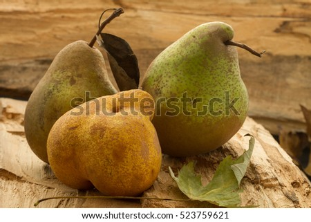 Three Golden Pears on  wooden background, autumn still life.