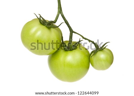 Three green tomatoes isolated on white