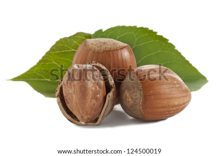Three hazelnuts and green leaves on a white background
