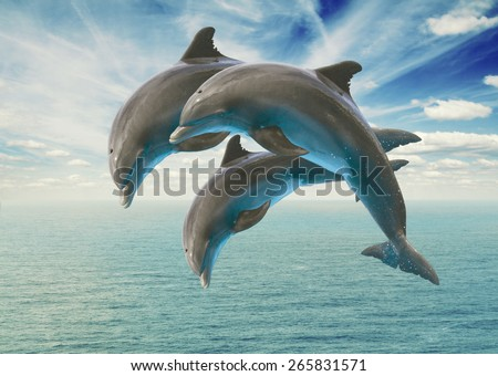 three jumping dolphins, seascape with deep  ocean  waters and cloudscape - stock photo