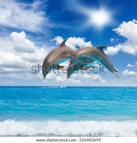 three jumping dolphins, sunny seascape with deep  ocean   - stock photo