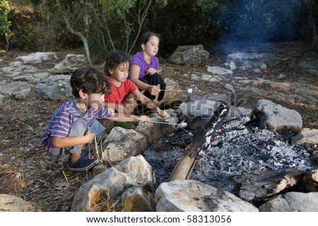 Three kids roasting marshmallows at a campfire - stock photo