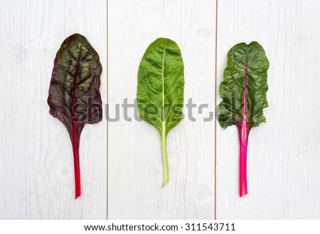 Three leaves of fresh swiss chard on a white table - stock photo