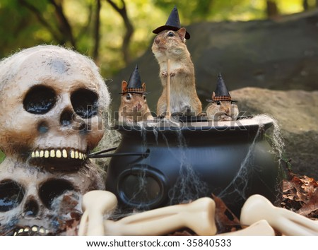 three little chipmunk witches stir up trouble from their cauldron - stock photo