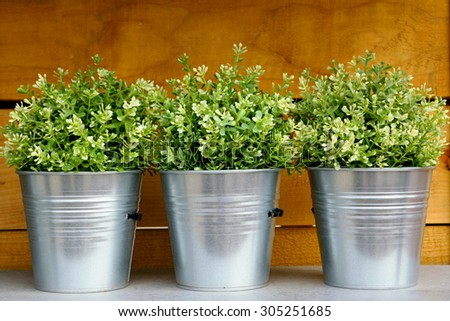 Three metal garden pots with plants - stock photo
