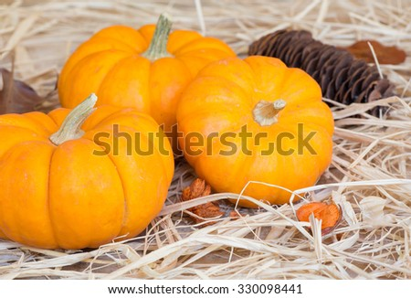 Three mini pumpkins on a straw surface - stock photo