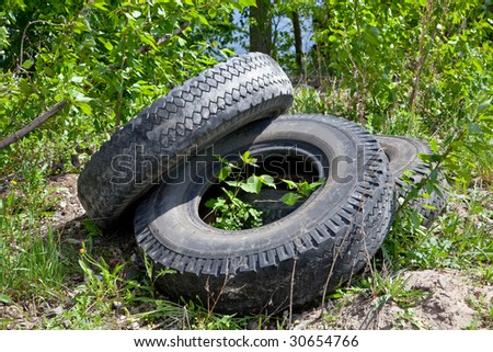 Three old automobile wheels on a green grass