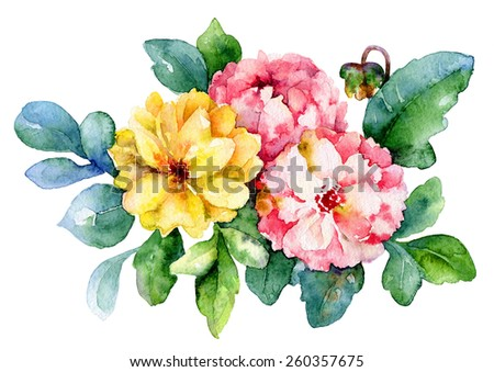 Three pink and yellow dahlia isolated on white background. Watercolor illustration - stock photo