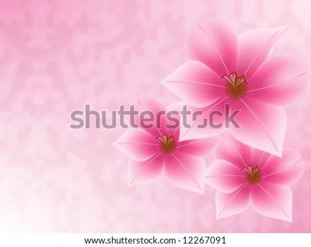 Three pink flowers on a pink background.