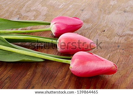 Three pink flowers on old wooden background - stock photo
