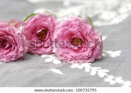 Three pink roses on lace - stock photo