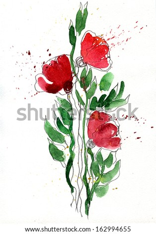 three poppy flowers drawing in watercolor - stock photo