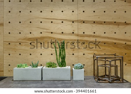 Three pots with plants on the gray rack on the wooden wall background. There is a geometric figure decoration on the right from the pots. Close-up photo. - stock photo