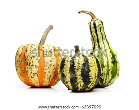 Three pumpkins, isolated on white