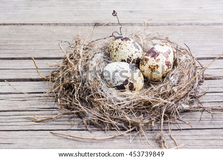 Three quail eggs in a bird's nest on a wooden background