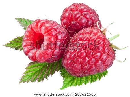 Three raspberries with leaves isolated on a white background. Clipping path.