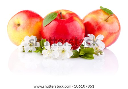 Three Red Apples with Leaf and Flowers isolated on a white background - stock photo
