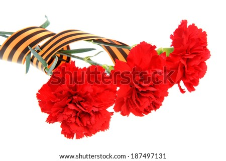 Three red carnations tied with Saint George ribbon isolated on white - stock photo