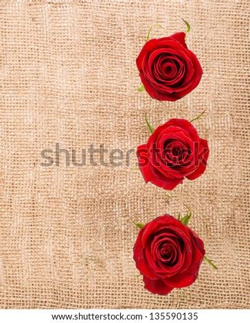 three red roses against a canvas bag - stock photo