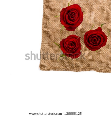 three red roses against a canvas bag isolated on white background - stock photo