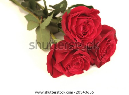 Three red roses lay on a white background