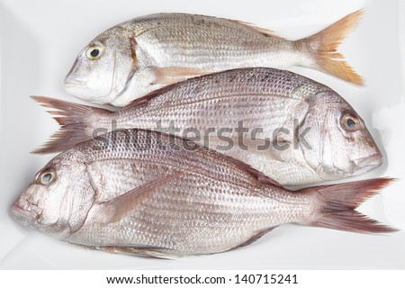 Three red sea breams on a white plate. - stock photo
