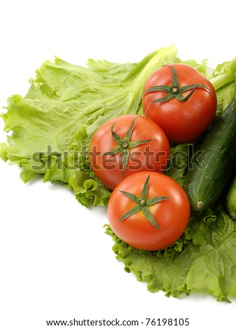 Three red tomato and green cucumber on green lettuce
