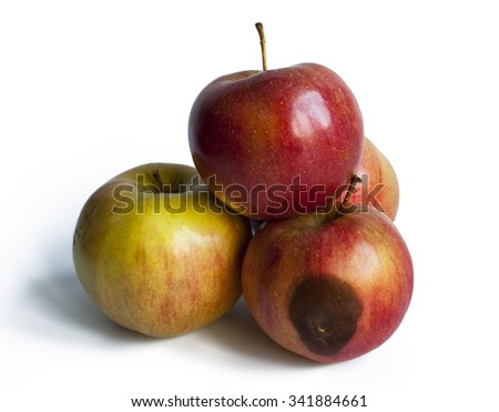Three ripe apples and one spoilt slightly  on a white background - stock photo