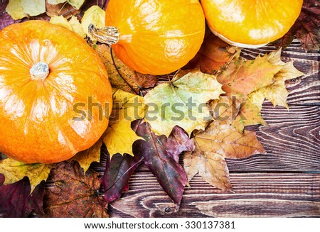 Three ripe pumpkins in autumn maple leaves - stock photo