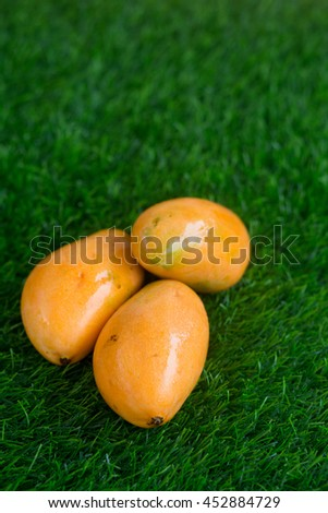 Three ripe yellow mangoes on the grass