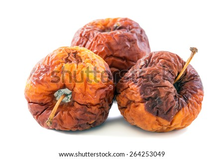 Three rotten apples on a white background. - stock photo