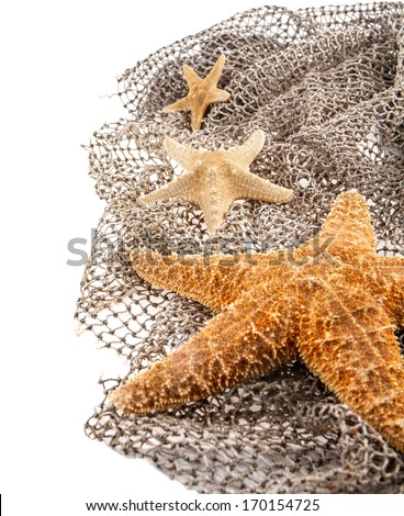 three sea the stars of different sizes lie on the fishing net on a white background - stock photo