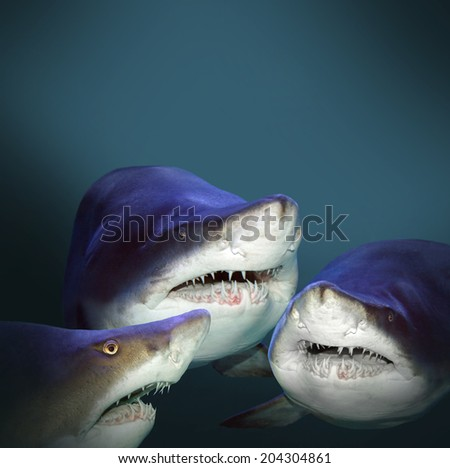 Three sharks have a fun. Picture with space for your text. - stock photo