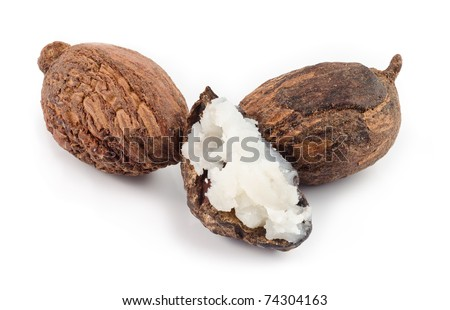 three shea nuts, one is filled with butter. - stock photo