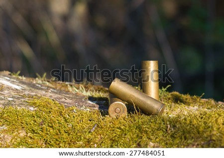 Three shotgun brass metal old cartridges are at the moss on the tree - stock photo