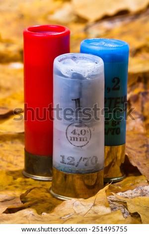 three shotgun cartridges on fallen leaves - stock photo