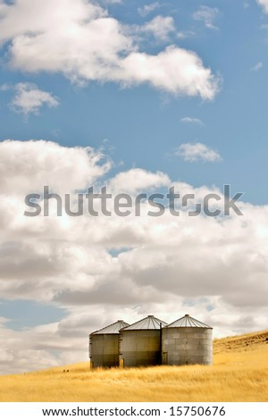 Three silos in a wheat field under a puffy cloud blue sky - stock photo