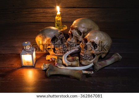 Three skull and pile bone on old wooden table / Still Life style