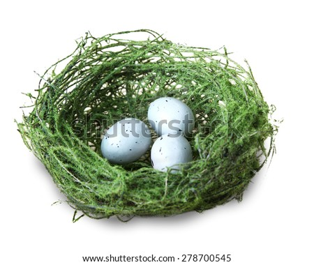 Three small blue speckled eggs in a green moss bird nest on isolated white background