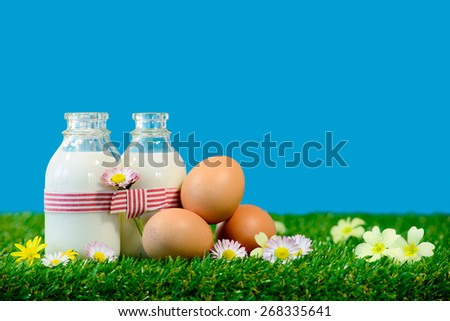 three small bottles of milk and eggs on the grass - stock photo