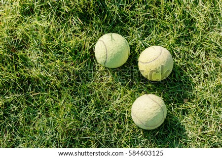 Three Tennis ball on the lawn