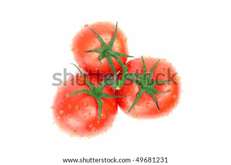 Three tomatoes with water drops isolated on white background - stock photo