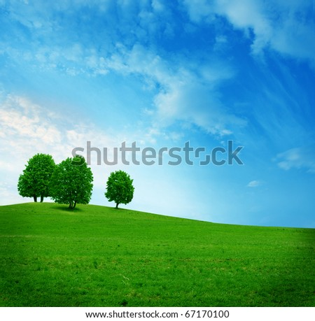 three trees on the green field - stock photo