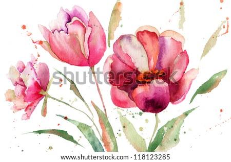 Three Tulips flowers, watercolor illustration - stock photo