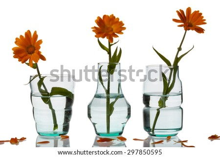 Three vase on white background. - stock photo