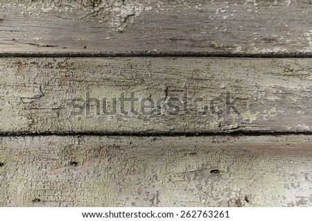 Three very old grey darkened wood planks with falling off green pant, knots, holes from nails shot close up in great detail - stock photo