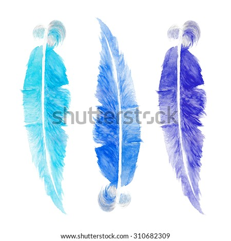 Three watercolor bird feather on white background - stock photo