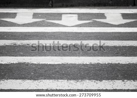 Three white arrows and lines on dark gray asphalt road, pedestrian crossing road marking - stock photo